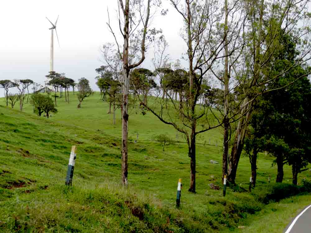 Real Feeling of Ambewela Wind Power & Ambewela Farm Nuwara Eliya