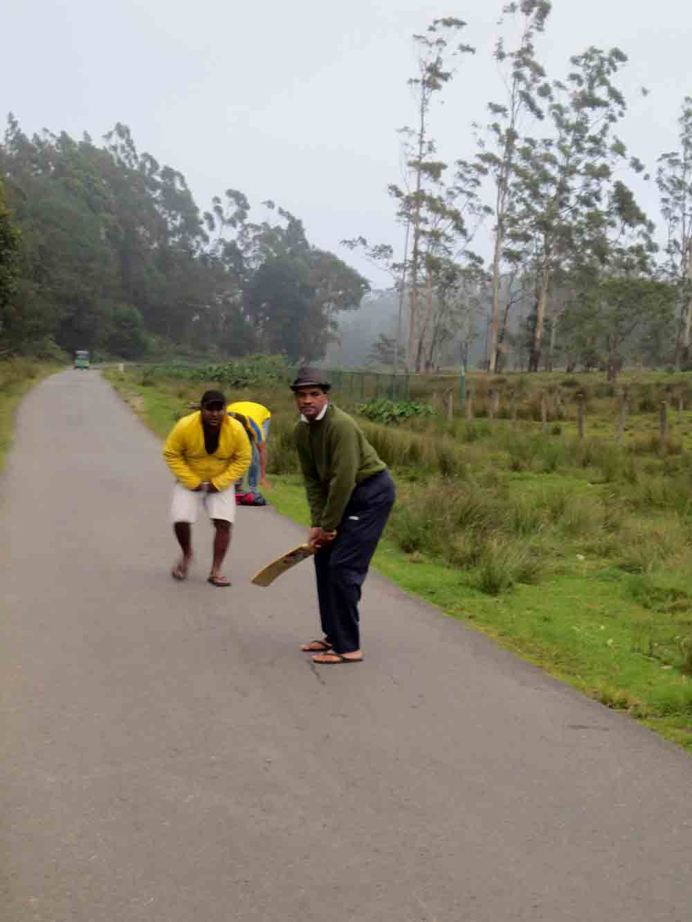 Cricket_Pattipola_Nuwara_Eliya