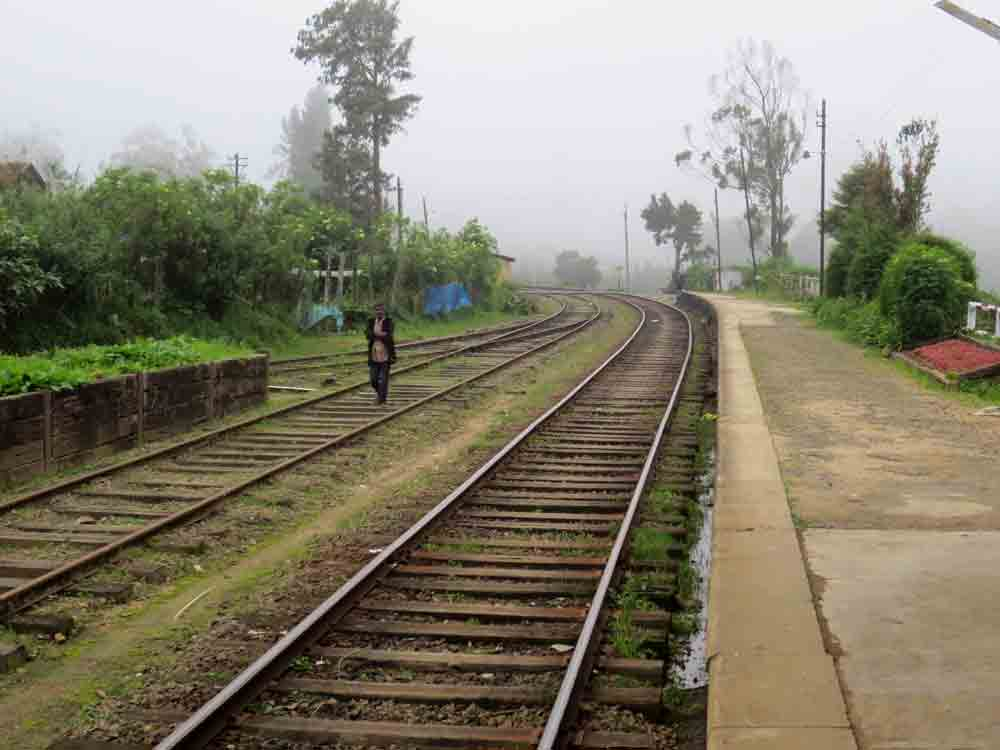 Pattipola_Station_Nuwara_Eliya6