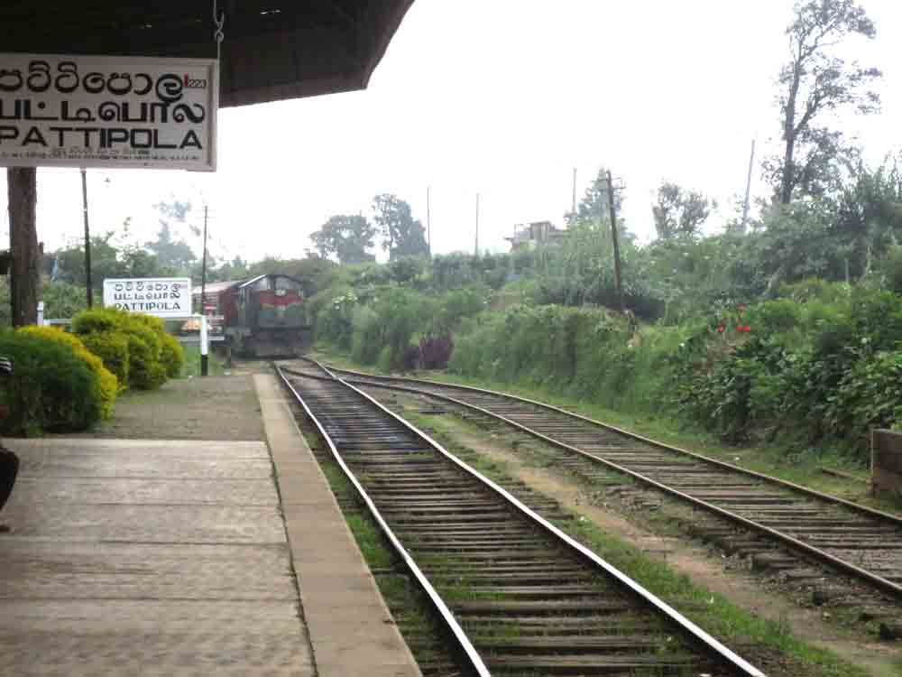 Train_Approach_Pattipola_Station_Nuwara_Eliya3