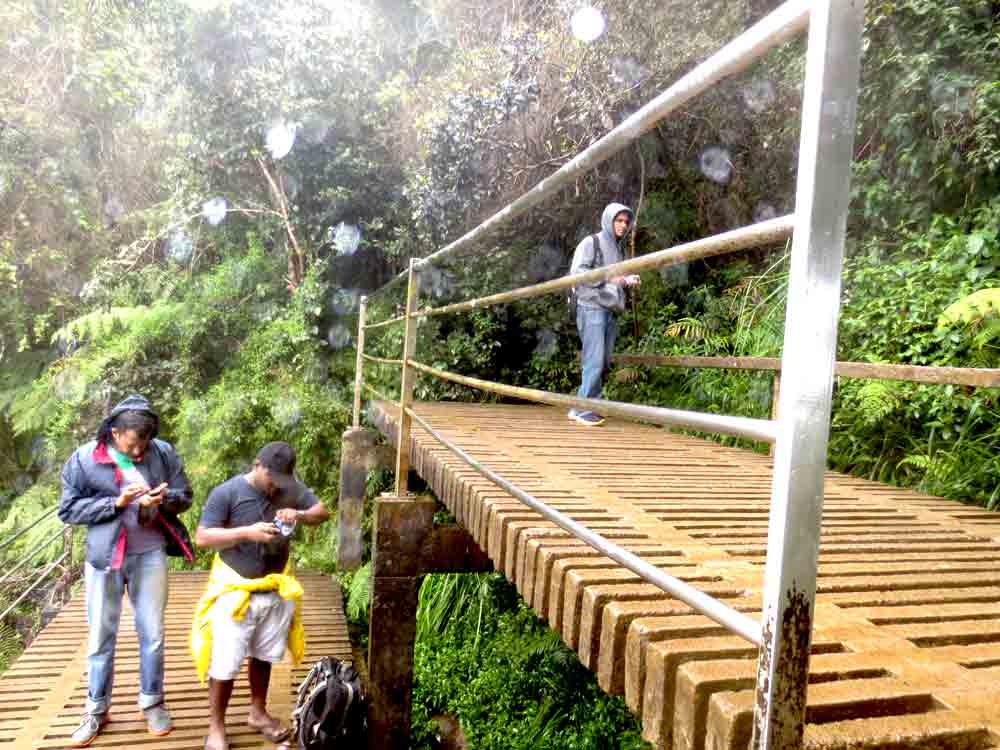 Horton_Plains_Baker's_Falls_Viewing_Stage