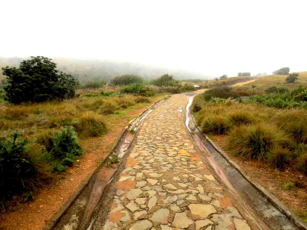 Horton_Plains_Man_Made_Road_Nuwara_Eliya