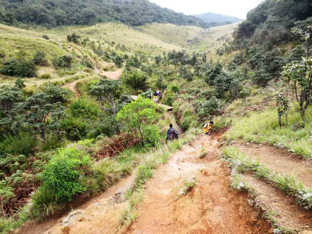 World's_End_Horton_Plain_Sri_Lanka10