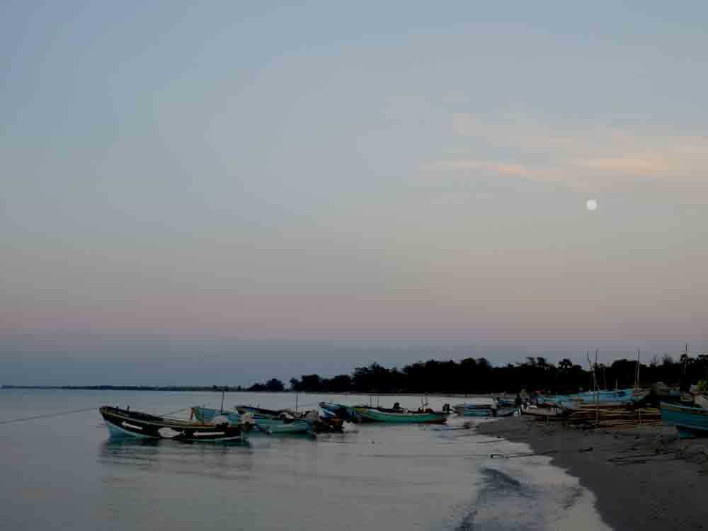 Casuarina Beach In Jaffna