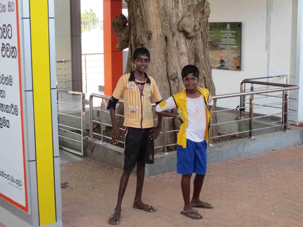 Jaffna People Life