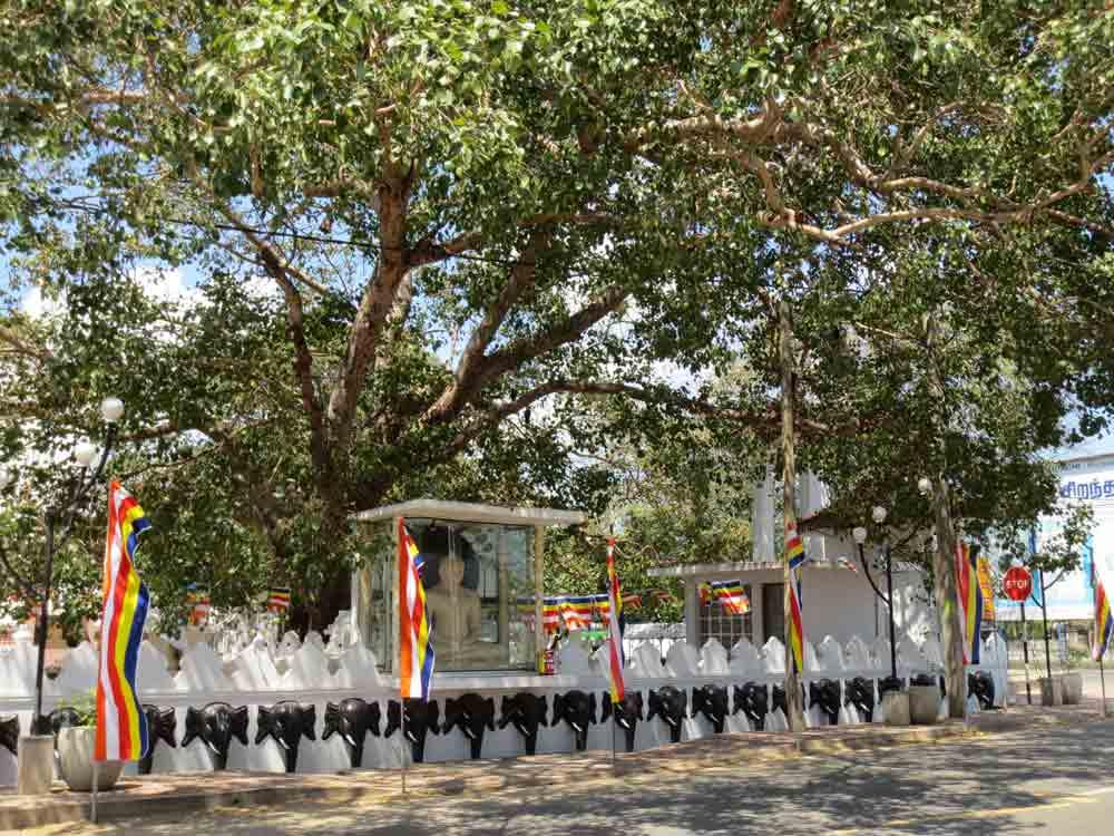 Nagadeepa Viharaya Temple In Jaffna Town. This is not the Main Nagadeepa Viharaya Temple