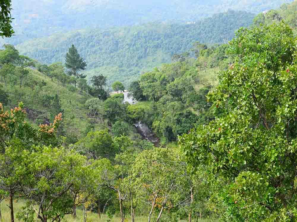 Diyaluma Falls Hike